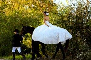 pet-in-wedding-14